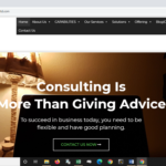 bulls capital website design - management consulting firm
